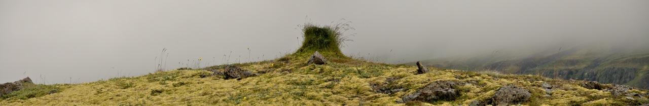 Sigurður Sigurðarson - Hausmynd